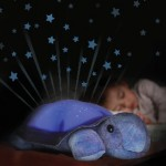 Twilight Constellation Night Light